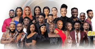 How to Vote for Your Favorite Housemate in BBNaija 2021