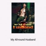 My All-Round Husband Chinese Novel
