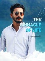 The Pinnacle of Life Novel
