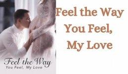 Feel the Way You Feel, My Love Novel
