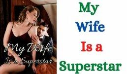 My Wife Is a Superstar Novel