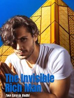 The Invisible Rich Man Novel