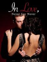 In Love, Never Say Never Novel